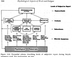 1976 Symptom Model