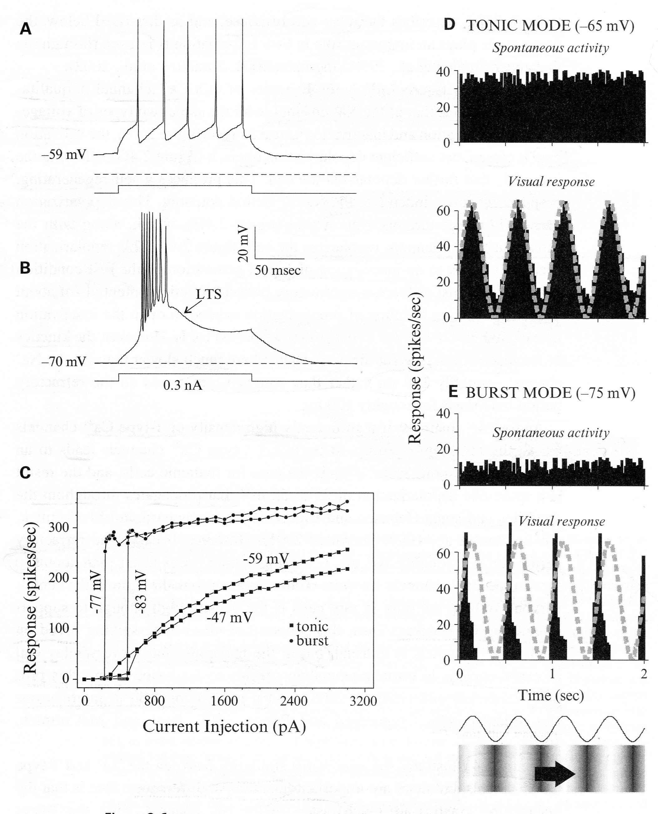 mechanisms for gating out unwanted sensory input