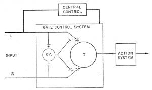 Melzak Wall 1984 Spinal cord gate