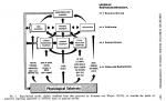 Pandolf schema 1975