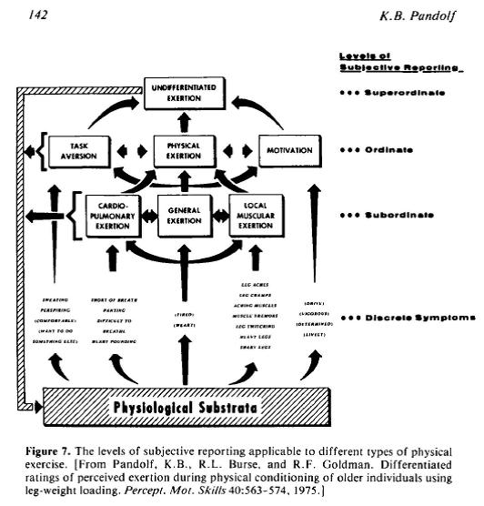 Pandolf schema 1983
