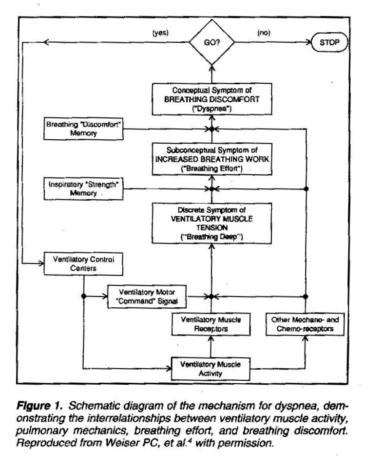A 1992 Schematic Diagram for Dyspnea - Endurance Education Endurance ...